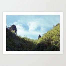 on the way home from tiger hill Art Print