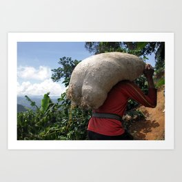 Colombia Coffee Farm Art Print