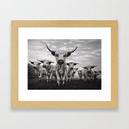 Highland Cattle Mixed Breed Mono Framed Art Print
