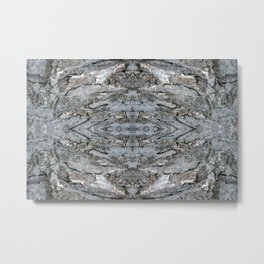 Abstract Maple Bark - Natural Patterns - Maple & Lichen - Old Mossy Maple Tree Bark Metal Print