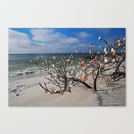 Sacred Whispers Canvas Print