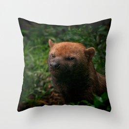 Bush Dog Throw Pillow