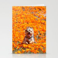 minnie Stationery Cards featuring Yorkie in Poppies by Sue Liberto Photography