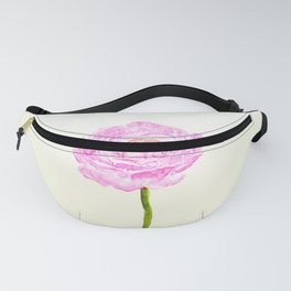 pink cultivited buttercup, Ranunculus Fanny Pack