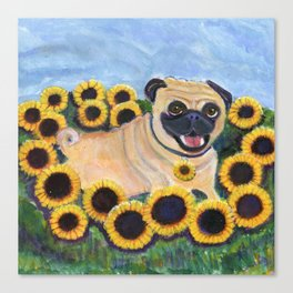 Pug in Sunflowers Canvas Print