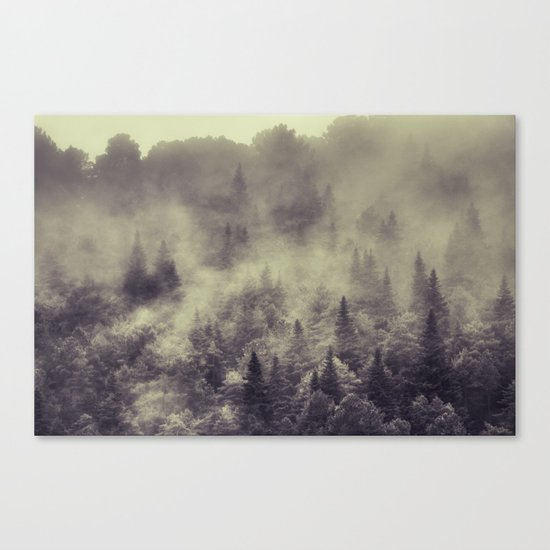 """""""Into the woods"""" Love the forests Canvas Print"""