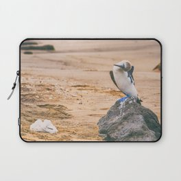 Blue footed booby bird nest with baby Laptop Sleeve