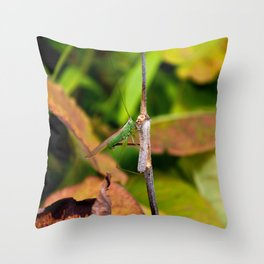 Conehead Cricket Throw Pillow