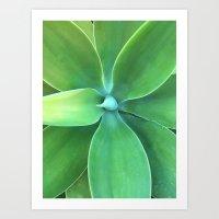 Aloe Vera Art Print