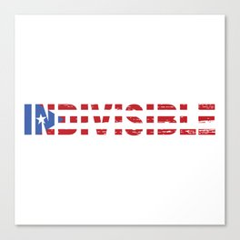 Indivisible Canvas Print
