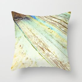 Beach Steps Throw Pillow