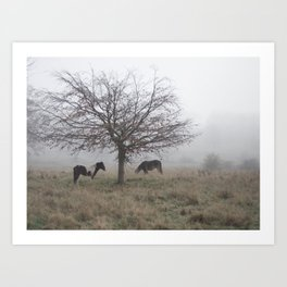 Two Horses Under a Tree in the Mist Art Print