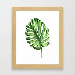 Monstera green leaves Framed Art Print
