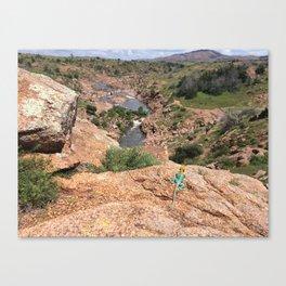 Boomer Lizard View Canvas Print
