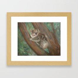 Koala Love with Joey Framed Art Print