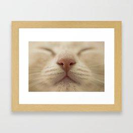 Le sage Framed Art Print