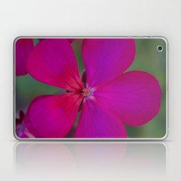 Pick Me Laptop & iPad Skin