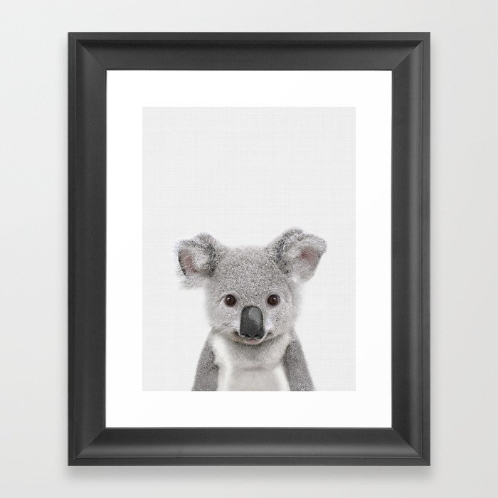 Koala Print Australian Baby Animal