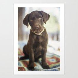 Labrador Love Art Print