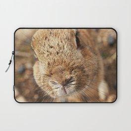 Rabbit Whiskers Laptop Sleeve