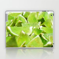 Jello Laptop & iPad Skin