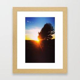 VineYard Sunset Framed Art Print
