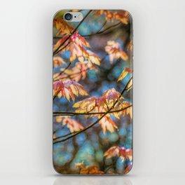 Autumn Colourburst  iPhone Skin