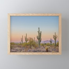 Desert / Scottsdale, Arizona Framed Mini Art Print