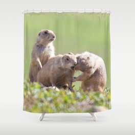 Watercolor Prarie Dog 06, Boulder County, Colorado, Gimme a Kiss Love Shower Curtain