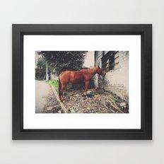Indomable Framed Art Print