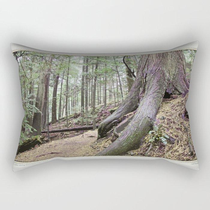 BIG CEDAR ALONG MOUNTAIN LAKE TRAIL Rectangular Pillow