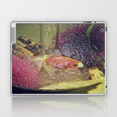 Fish Laptop & iPad Skin