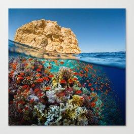Island Sea Underwater Canvas Print