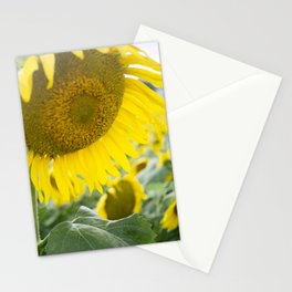 here comes the sun. Stationery Cards
