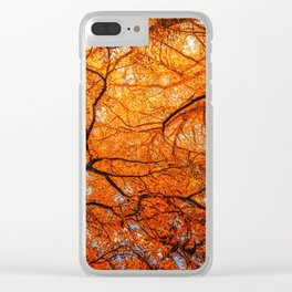Sky Roots in Forest Red Clear iPhone Case