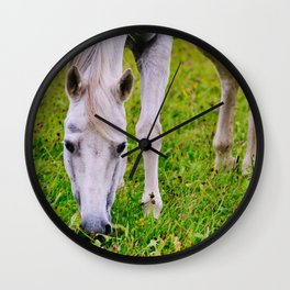 White horse on green meadow Wall Clock