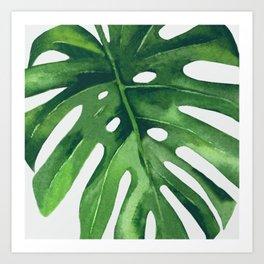 Monstera Leaf Kunstdrucke