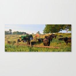 Deutz D 6807 Canvas Print