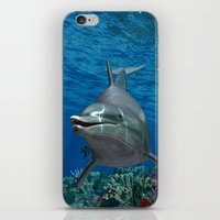 dolphins iPhone & iPod Skins featuring Dolphins by Simone Gatterwe