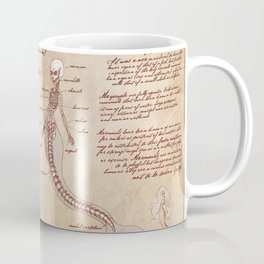 Anatomy of the Mermaid Coffee Mug