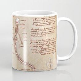 Anatomy of the Mermaid Coffee Mug