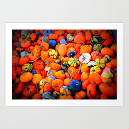 Colorful Tiny Pumpkins Art Print