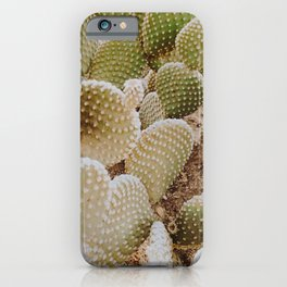 Desert Cactus LV / Joshua Tree, California iPhone Case