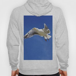 Seagull taking off Hoody