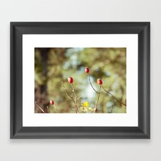 winter joy Framed Art Print