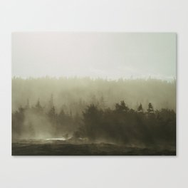 cloudy conifers Canvas Print