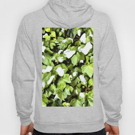 Snow Patterns a Wall of Climbing Ivy Hoody