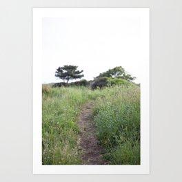 Grassy Hill Art Print
