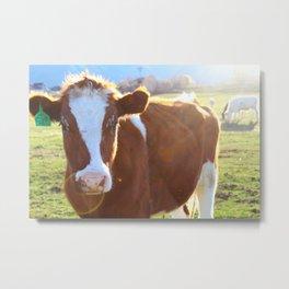 CoW #1 Metal Print