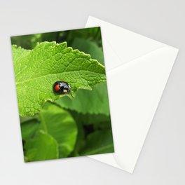 black ladybug I Stationery Cards